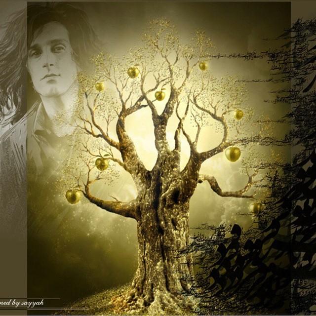 کاشت درخت سیب در روز درخت کاری به یاد مرتضی پاشایی